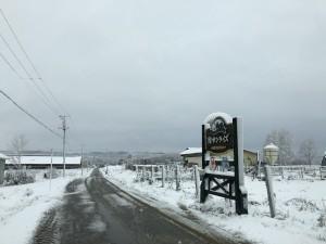 H29.11.4  雪